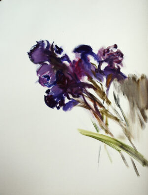 Irises original oil painting on paper