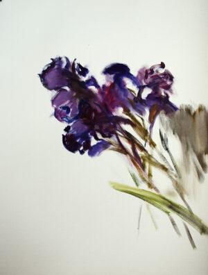 Irises original oil painting on paper